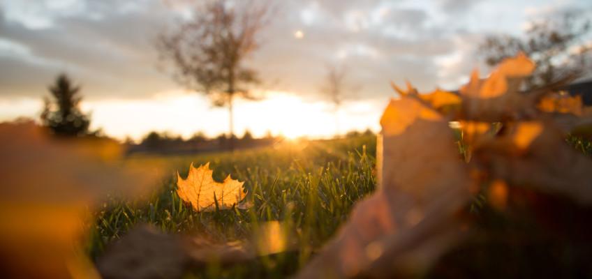 Jak podzim ovlivňuje naše zdraví? Deprese, bolest zad i nachlazení