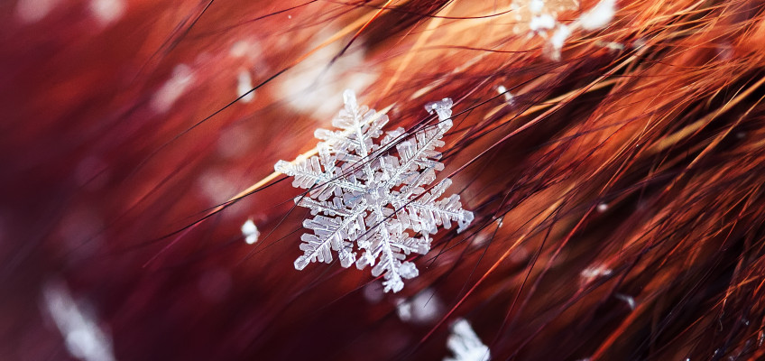 Trápí vás v zimě rychle se mastící vlasy? Máme řešení!