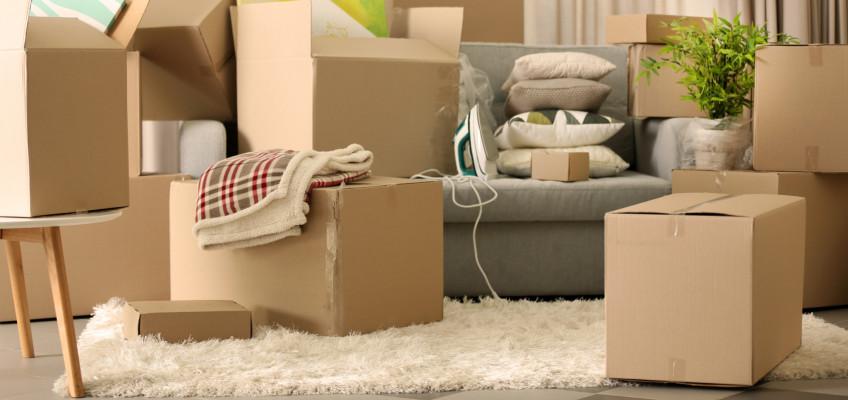 Lepší vyhořet než se stěhovat? Se správnou přípravou to neplatí