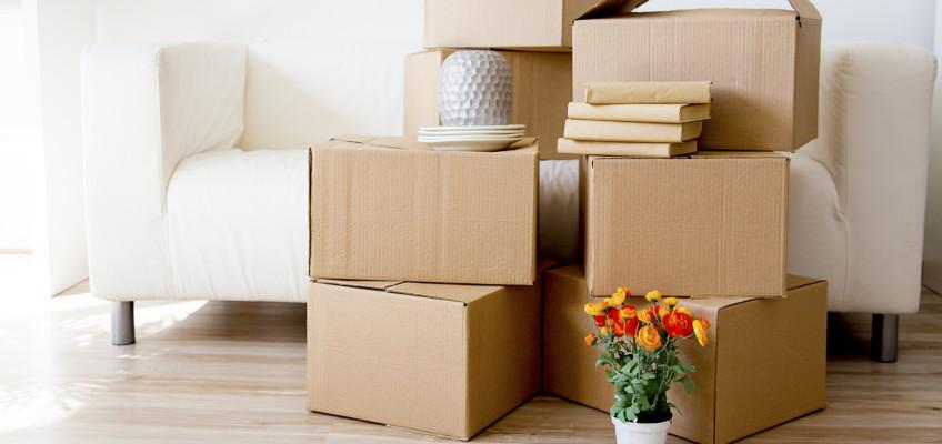 Čeká vás letos stěhování? Těchto 5 základních pravidel vás ušetří zbytečného stresu i výdajů!